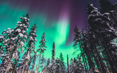 Expired:Deal of the Week – Lapland!